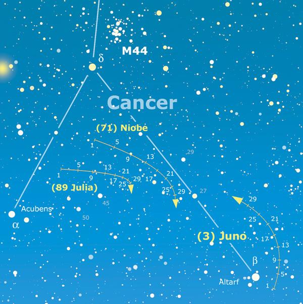 Cartina asteroidi 190